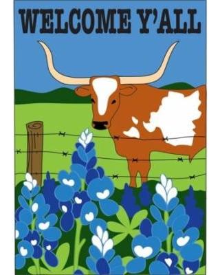 jozie-b-5-welcome-longhorn-flag-large.jpg
