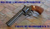 DiamondBack-4ever-02.JPG